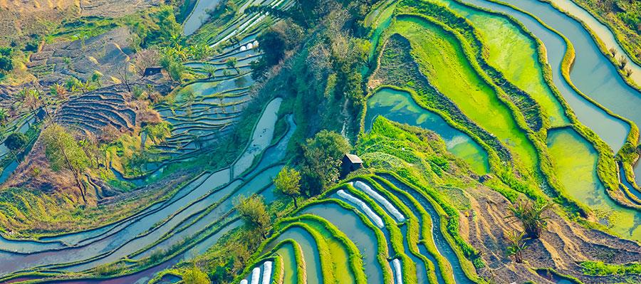 水肥一体化发展优势