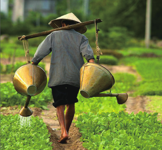 水肥一体化未来农业的发展方向!